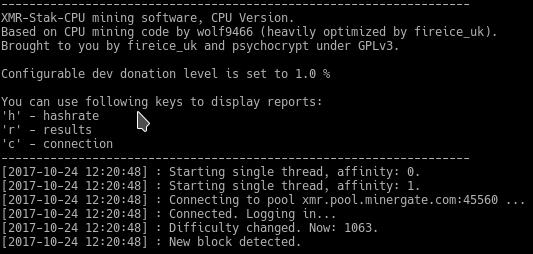 Результат настройки XMR STAK CPU