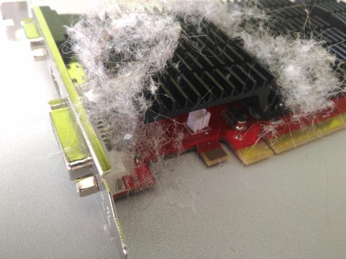 Очистка от пыли видеокарт