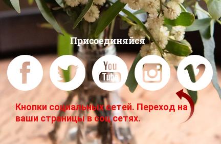 Кнопки перехода на страницы социальных сетей